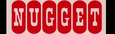 Fallon Nugget
